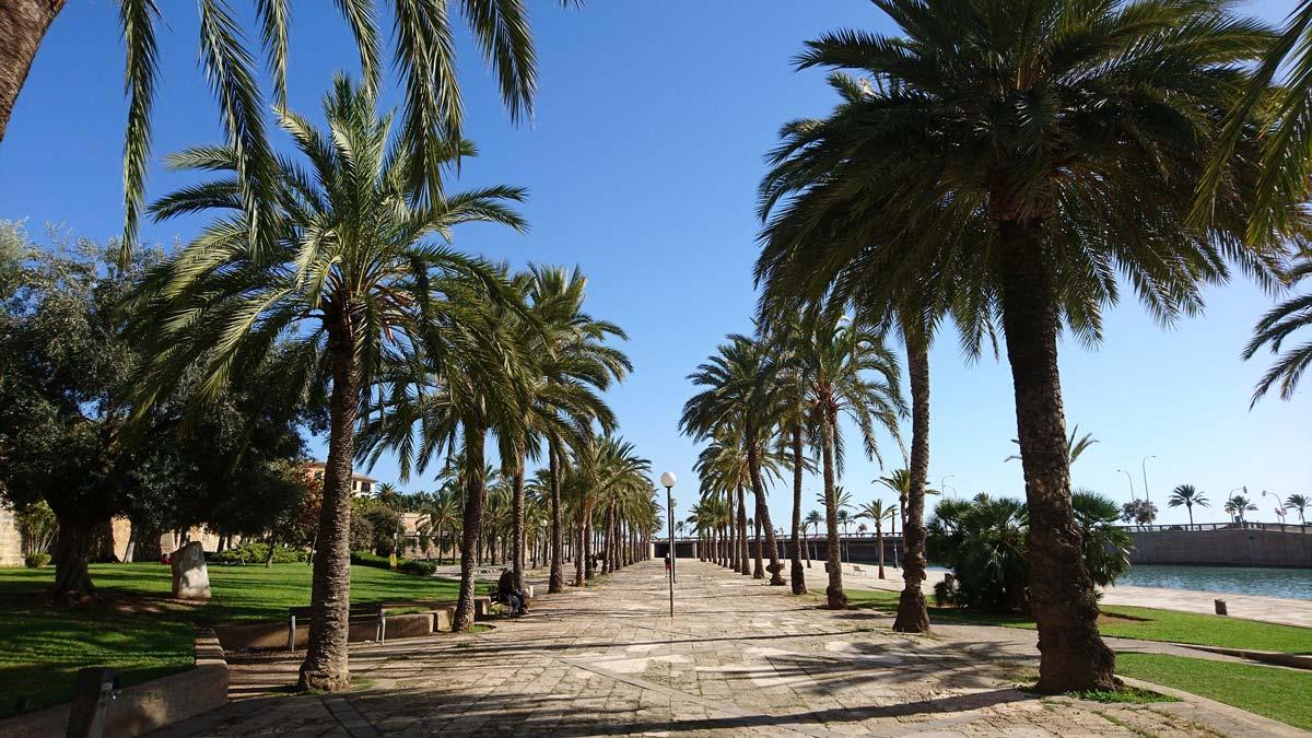 palma podcast welttournee der reisepodcast