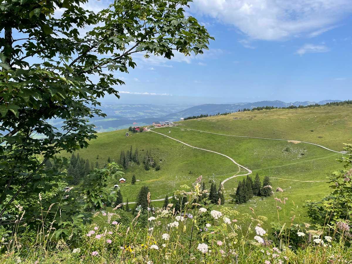 sommer in österreich podcast welttournee